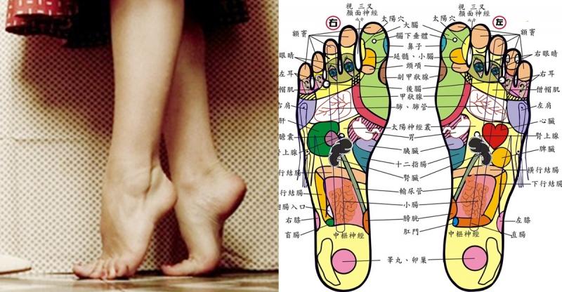 踮腳養生 ;         每天只要花幾分鐘,讓你養腎、養氣又養心 Fd7d5fd6-55c2-4c79-2e5e-26a04d89c3cb