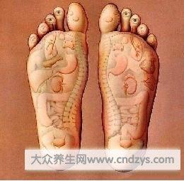 踮腳養生 ;         每天只要花幾分鐘,讓你養腎、養氣又養心 Fde05aa4-55c2-4c79-2e5e-f37e97cdd160