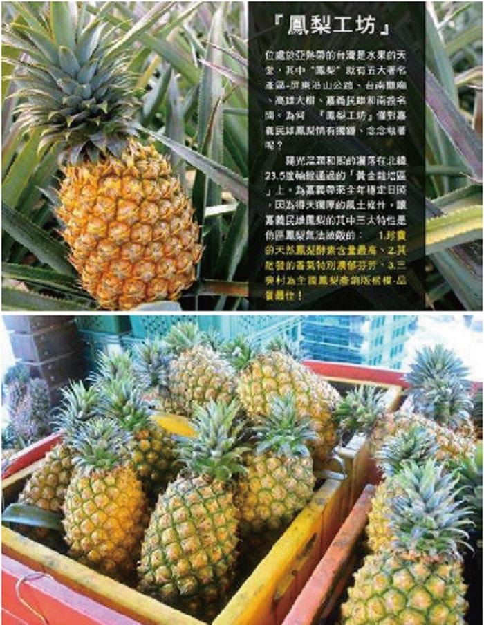 「鳳梨工坊」超強鳳梨酵素 輕鬆除垢過好年