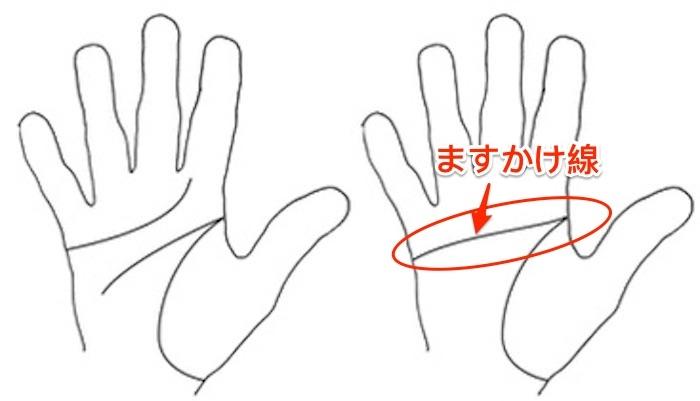 日本人也迷看手相!手掌上有「ますかけ線」的人竟然都是這樣的...連「魯夫」都有這種性格!