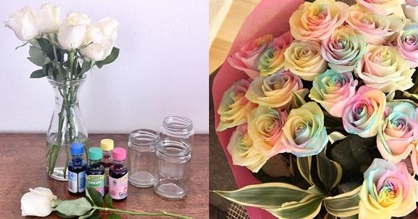 美得不要不要的「彩色玫瑰」,原來作法那麼簡單!只要準備「這些東西」你也做得出來~