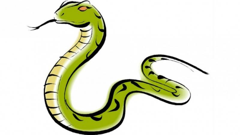 出大事了,你身邊有屬蛇的嗎?有你就不得了了!!!