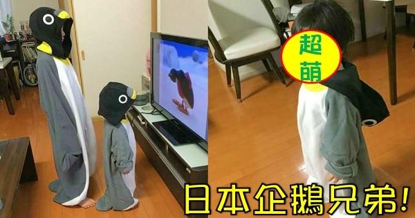 日本討論度超高!這對兄弟「扮企鵝」已經很萌了,沒想到脫下帽子後的「超可愛臉蛋」萌死全日本網友啊!