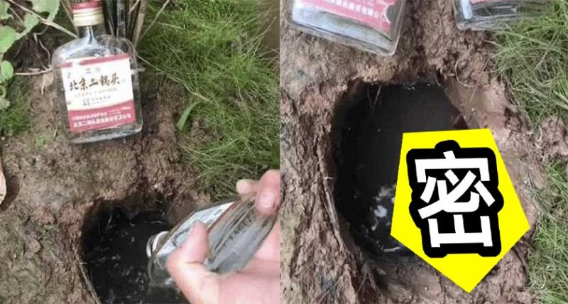 農夫在田裡發現天坑般的地洞,突發奇想竟然用「二鍋頭往裡面狂灌」,沒想到意外引出洞裡的神秘生物?!網友:「不醉也暈了吧!」