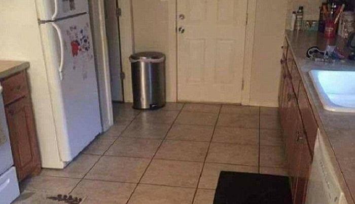 史上最難大家來找碴!全世界只有3.7%的人能夠找出「隱藏在照片中的狗」,就算開了天眼也找不到…