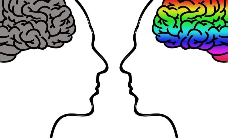 「3個好消息,才能抵過1個壞消息」人類天生會把負面事物看得很嚴重,正向大腦應該如何訓練?
