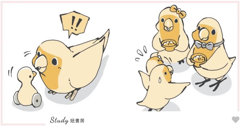鸟宝到底在想什幺?最诚实的鹦鹉行为百科#啾啾真心话
