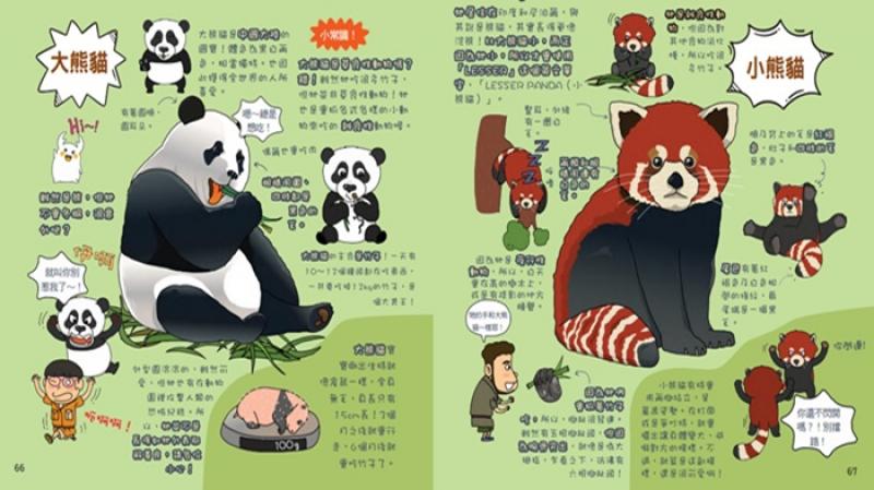 大小熊猫傻傻分不清?「功夫熊猫」中的师父居然是小熊猫
